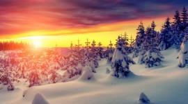 4K Snow Wallpaper For Desktop