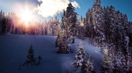 4k Winter Pics