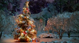 Christmas Tree Wallpaper High Definition