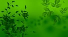 Green Wallpaper For Android