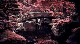 Japan Best Wallpaper