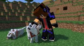 Minecraft Skin Image #1