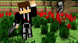 Minecraft Skin Wallpaper #3