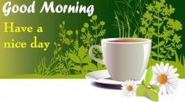 Morning Desktop Wallpaper For PC