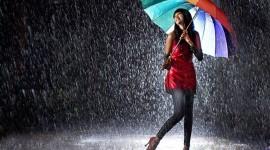 Rain Best Wallpaper