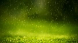 Rain Wallpaper For IPhone