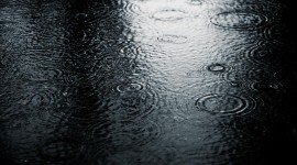 Rain Wallpaper Free