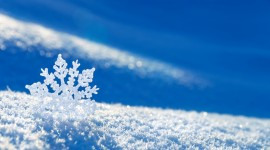 Snowflakes Desktop Wallpaper Free