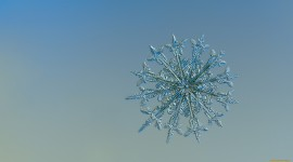 Snowflakes Image
