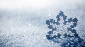 Snowflakes Wallpaper For Android