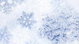 Snowflakes Wallpaper For Desktop