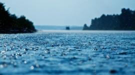 4K Rain Desktop Wallpaper Free