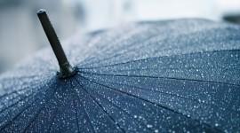 4K Rain Wallpaper