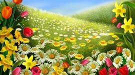 4K Spring Desktop Wallpaper HQ