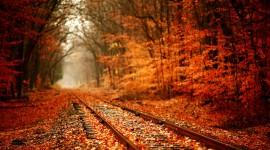 4k Railroad Wallpaper Ultra HD