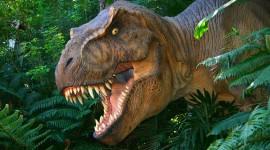Dinosaurs Desktop Wallpaper For PC