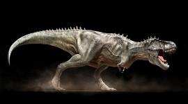 Dinosaurs Wallpaper Gallery