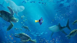 Finding Dory Desktop Wallpaper Free