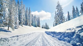 Road Winter Desktop Wallpaper Free