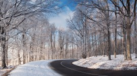 Road Winter Photo
