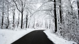 Road Winter Wallpaper Download