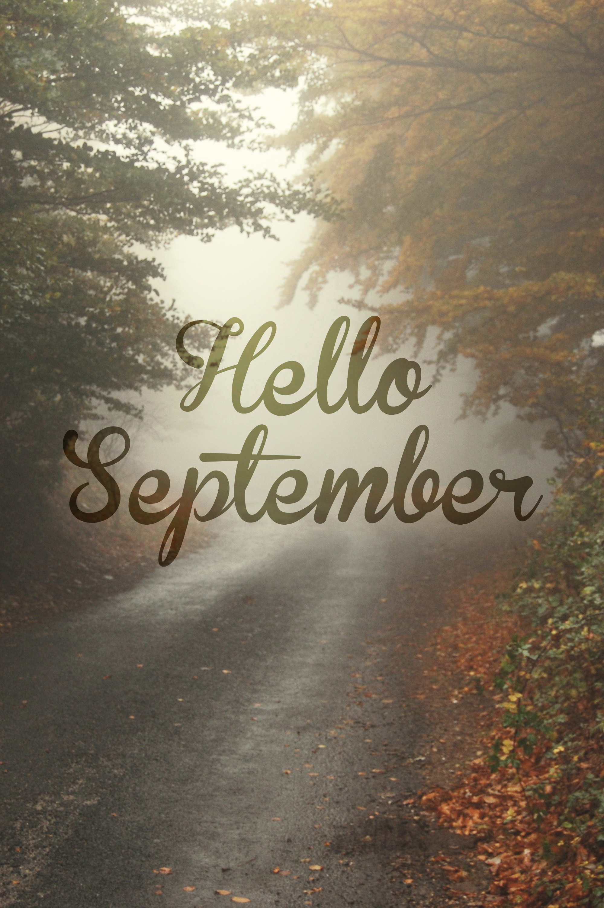 September Wallpapers High Quality Download Free