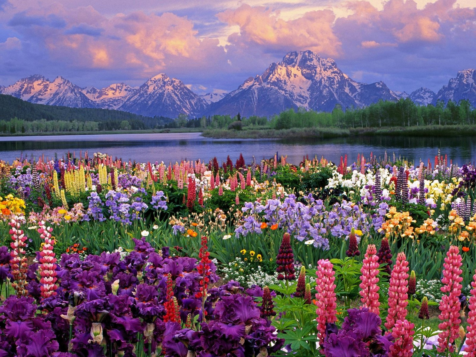 Spring wallpapers high quality download free - Wallpaper definition ...