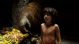 The Jungle Book Wallpaper Download