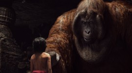 The Jungle Book Wallpaper Free