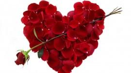 Valentines Day Photo Download
