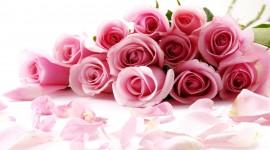 Valentines Day Photo Free