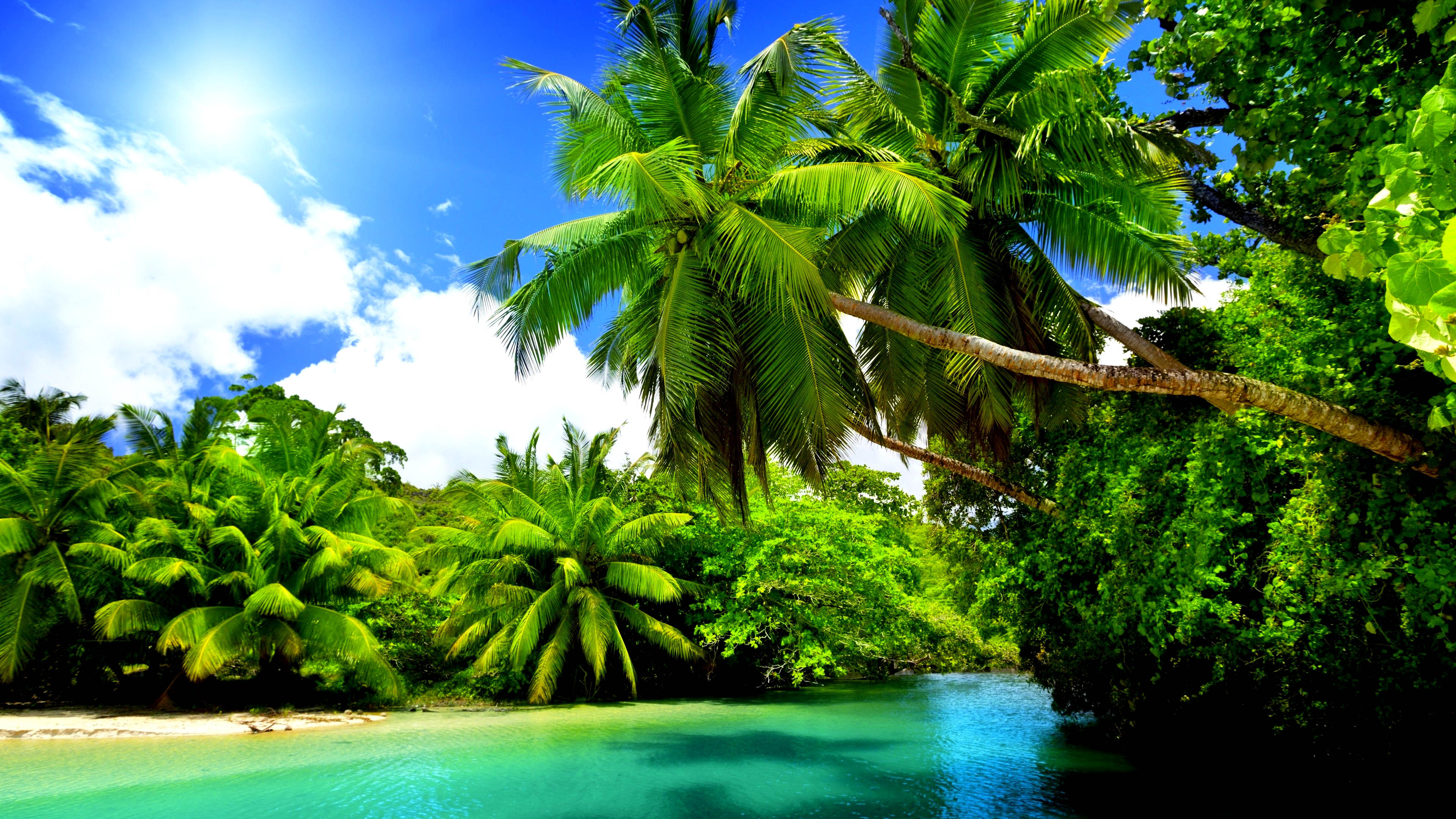 Hd Tropical Island Beach Paradise Wallpapers And Backgrounds: 4K Beach Wallpapers High Quality
