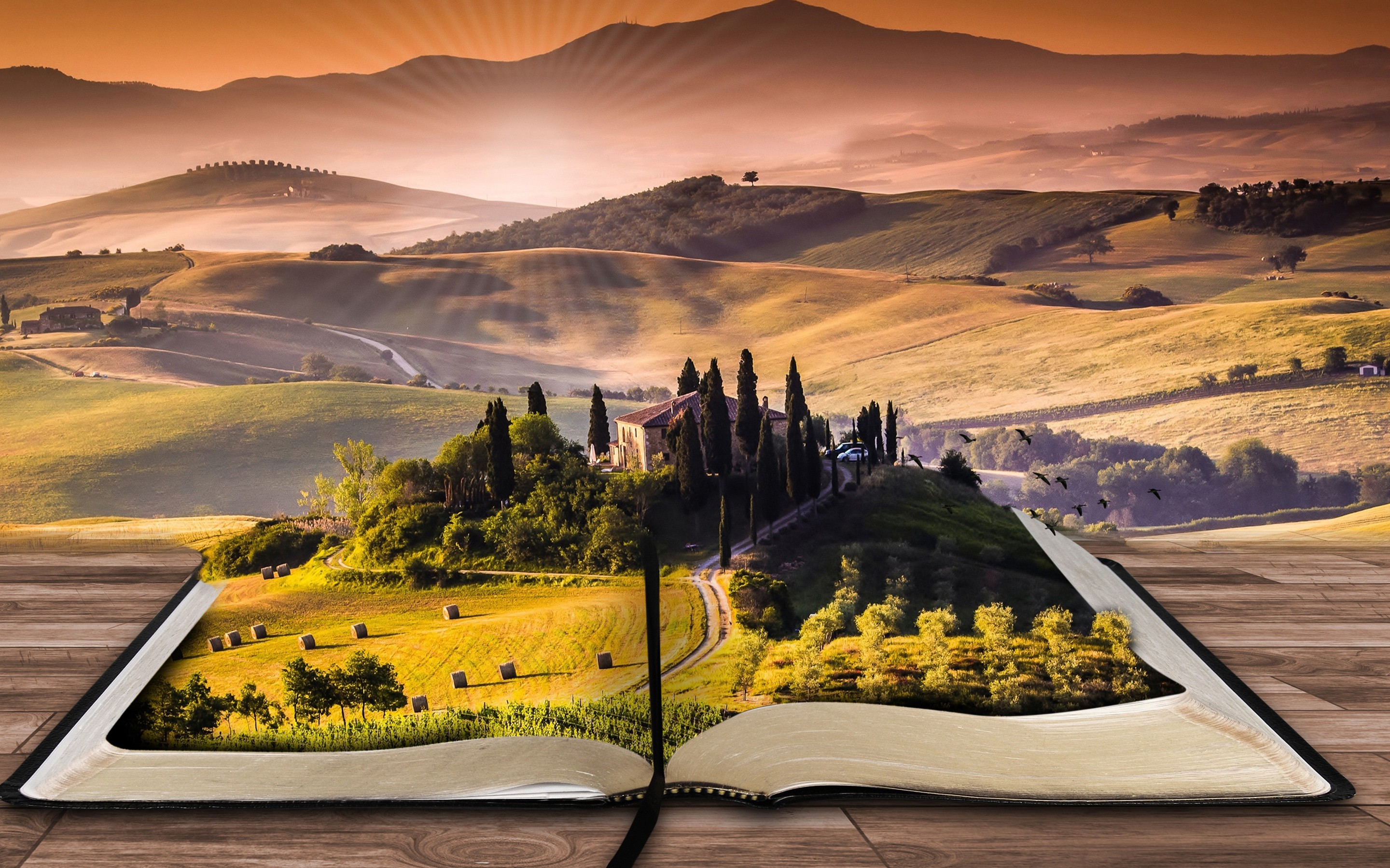 4k books wallpapers high quality | download free