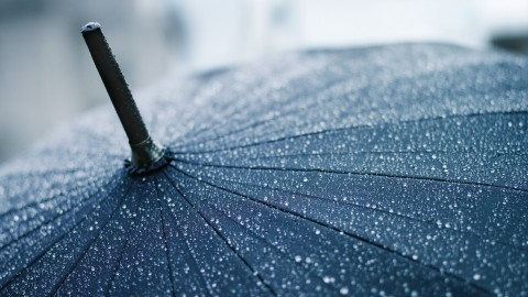 4K Umbrellas wallpapers high quality