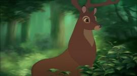 Bambi Desktop Wallpaper For PC
