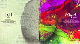 Brain Desktop Wallpaper Free