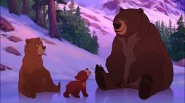 Brother Bear Desktop Wallpaper