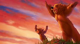 Brother Bear Image Download
