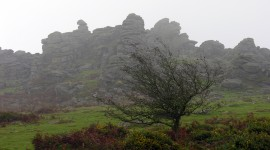 Dartmoor National Park Wallpaper For Desktop