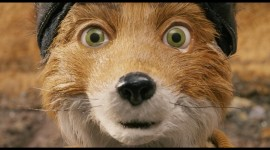 Fantastic Mr. Fox Photo Free