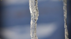 Icicles Wallpaper For IPhone Free