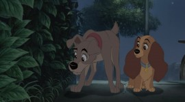 Lady and the Tramp Image Download