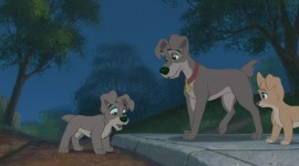 Lady and the Tramp Picture Download