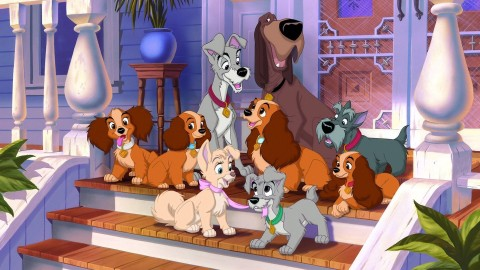 Lady and the Tramp wallpapers high quality