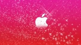 Pink Wallpaper Wallpaper Free