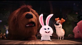 The Secret Life Of Pets Best Wallpaper