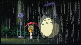 Totoro Wallpaper HQ