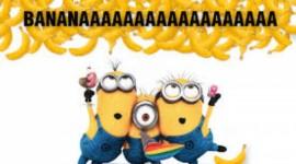 4K Bananas Image Download