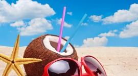 4K Coconuts Image