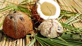 4K Coconuts Wallpaper